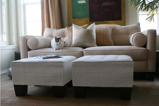 Captivating 26 Marvelous Cat Proof Sofa