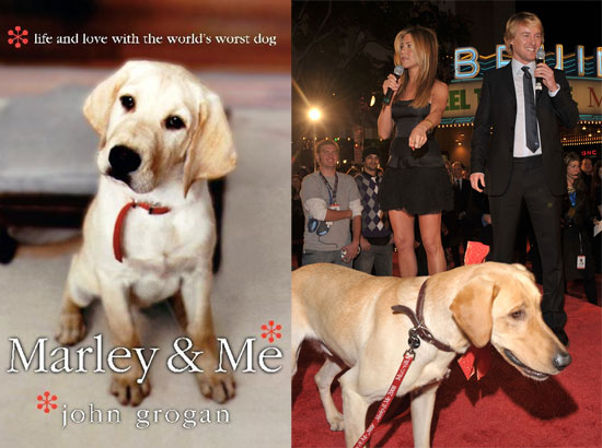 The purpose Marley and me sex pictures