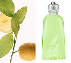 How to choose a perfume on March 8  in Charleston