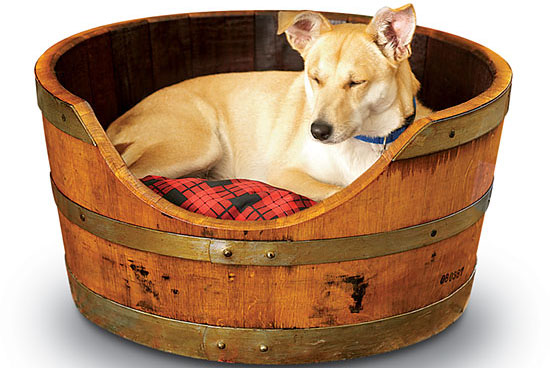 It's a (Wine) Barrel O' Bed! | Products, wine lovers, dog beds | PetSugar - Dogs, Cats, and Other Pets from petsugar.com