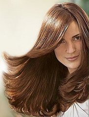 Best Bargain Hair Care Products