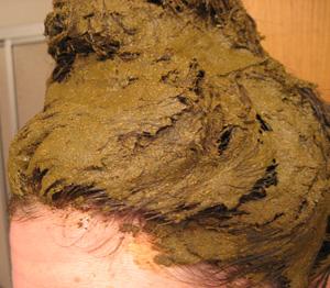 Home Spa Treatment Henna Your Hair Popsugar Fitness