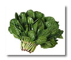 spinach top 10 healthiest food