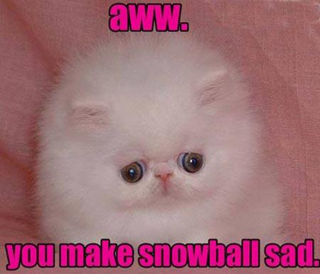 HURR DURR FAIL CODING. Snowball