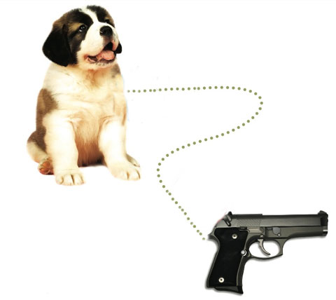 Funny Cats And Dogs With Guns