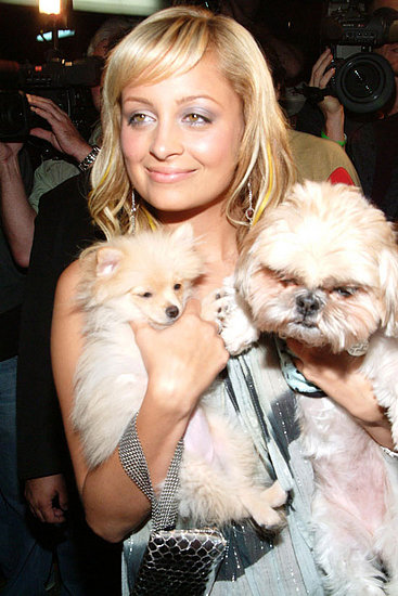 Nicole Richie may not be any closer to marriage but her pooches are!