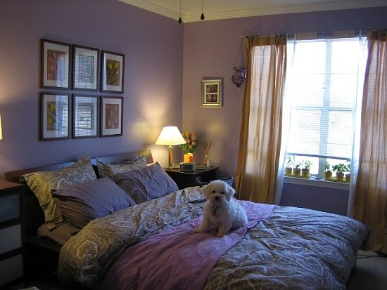 su casa purple post college bedroom popsugar home