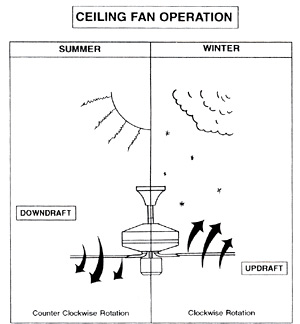 Ceiling Fan Direction - What You Need To Know :Ceiling Fan Direction