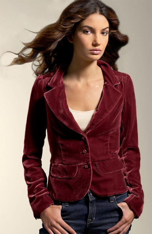 Collection Womens Velvet Blazer Pictures - Reikian