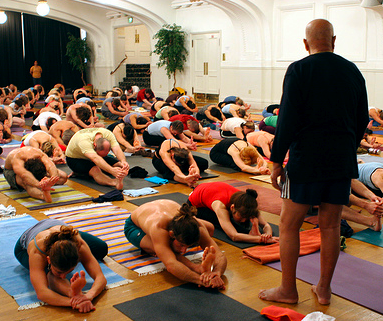 Ashtanga Yoga Rug Roselawnlutheran